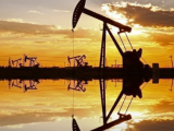 Analiza goriva in kurilnega olja